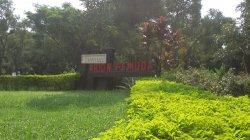 Taman Arion Pemuda ByPass